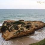 sitges-tpurs-excursions-027