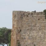 sitges-tpurs-excursions-098