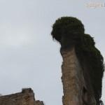 sitges-tpurs-excursions-109